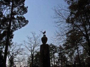 A-bird-perches-on-an-old-gravestone-which-isan-obelisk-topped-by-an-urn