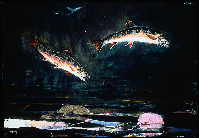 640px-Winslow_Homer_-_Leaping_Trout_(1892)