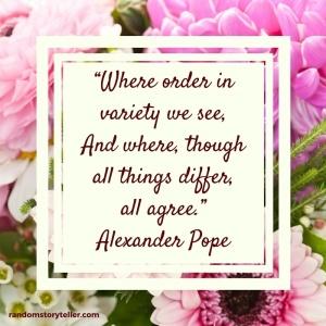 Alexander-Pope-quote-randomstoryteller