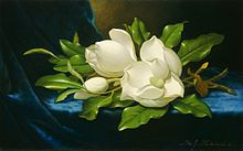 220px-Martin_Johnson_Heade_Giant_Magnolias_on_a_Blue_Velvet_Cloth_NGA