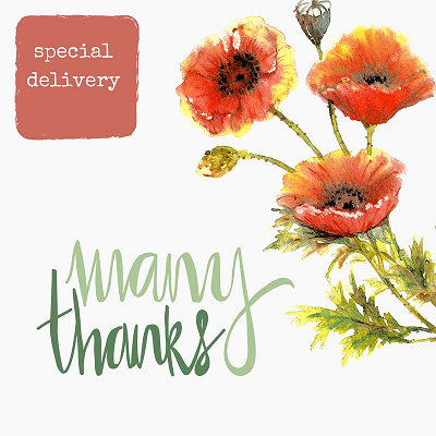 many-thanks-randomstoryteller-stationery-with-orange-red-poppies