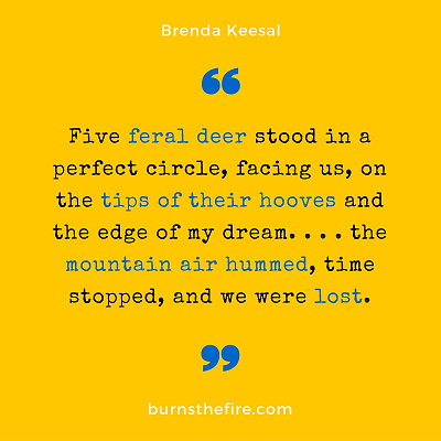 400px Quote from Deer People by Brenda Keesal @ burnsthefire (3)