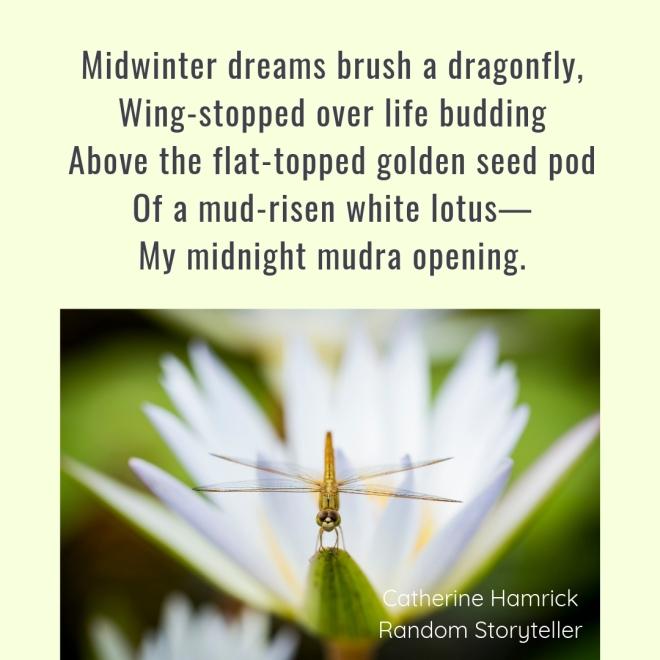 Poem_Midsummer Winter Snapshot_chamrickwriter_randomstoryteller_1080x1080