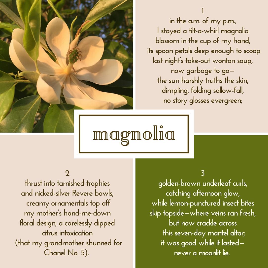 Magnolia Never A Moonlit Lie Random Storyteller