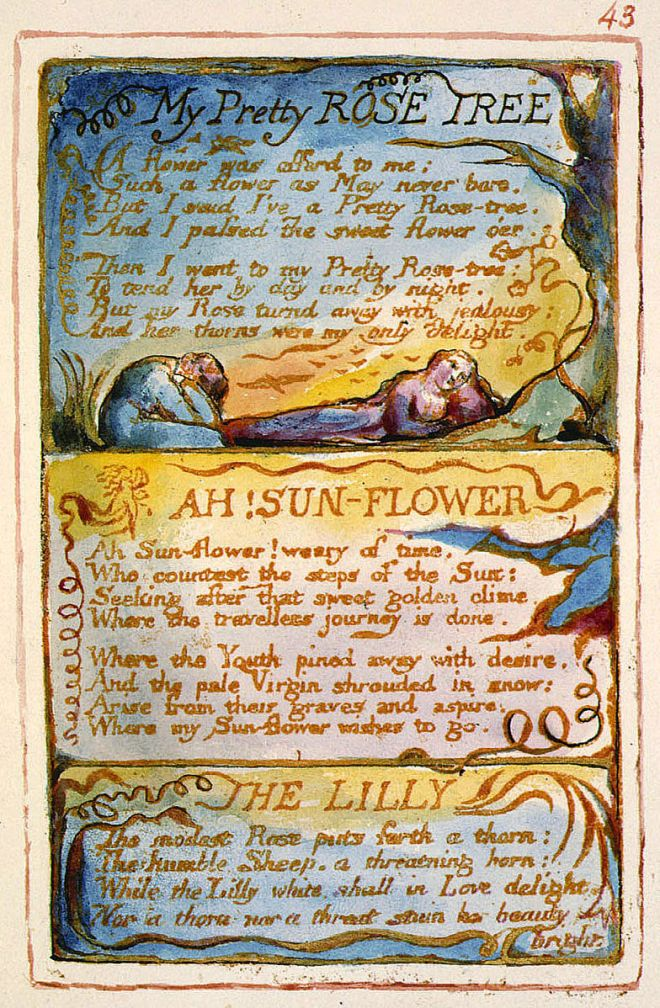 Songs_of_Innocence_and_of_Experience (The_Fitzwilliam_Museum)_object_43_My_Pretty_Rose_Tree