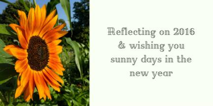 reflections-on-2016-happy-2017-randomstoryteller