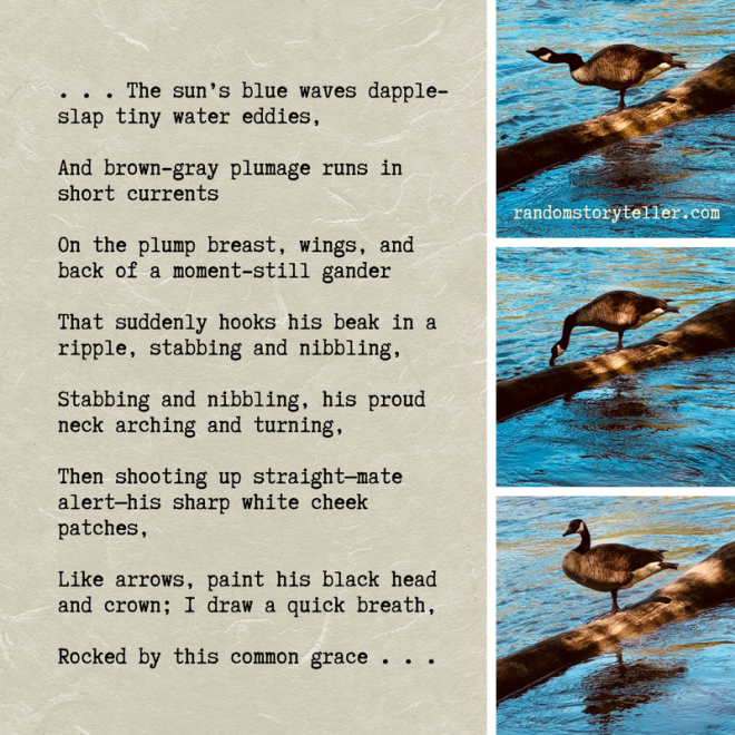 Poem excerpt Chattahoochee Song #2 by randomstoryteller chamrickwriter