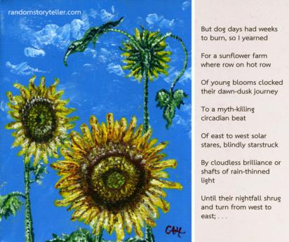 Poems About Sunflowers 7