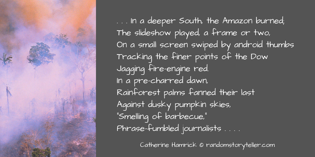 excerpt-from-poem-the-new-orange-by-chamrickwriter-randomstoryteller.com-with-image-of-amazon-rainforest-burning-1024x512.png